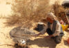 voyageur tout terrain en Tunisie