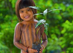 Aquaverde Amazonie